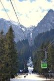 Grön kabel Royaltyfri Foto