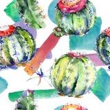 Grön kaktus för vildblomma Blom- botanisk blomma Seamless bakgrund mönstrar Arkivfoto