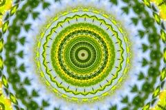 grön kalejdoskopprydnad royaltyfri illustrationer