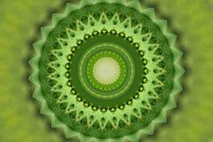 grön kalejdoskopprydnad stock illustrationer