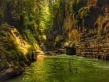 Grön kanjon Arkivfoto