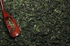 Grön kinesisk tebakgrund inget royaltyfri fotografi