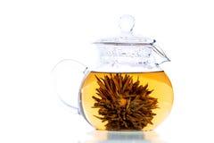 grön klar tea Royaltyfria Foton