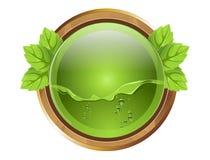 Grön knapp Arkivfoto