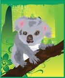 grön koala royaltyfri illustrationer