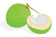 Grön kokosnöt Royaltyfria Bilder