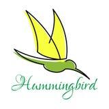 Grön kolibri med spetsiga vingar Arkivfoto