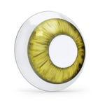 Grön kontaktlins Arkivfoto