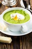 Grön kräm- soppa med det tjuvjagade ägget Arkivfoto