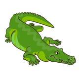 Grön krokodil i tecknad filmstil stock illustrationer