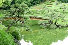 Grön kulle, bro, sjö i japansk zenträdgård Arkivbilder