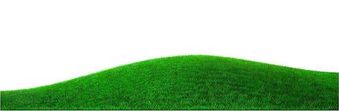 Grön kulle för vektor vektor illustrationer