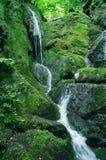 grön kullvattenfall Royaltyfria Foton