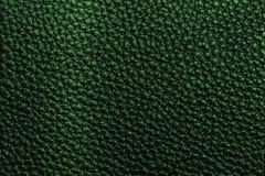 grön lädertextur Arkivbilder