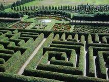 grön labyrint fotografering för bildbyråer