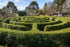 Grön labyrinthäcklabyrint & x28; Labirinto Verde& x29; på den huvudsakliga fyrkanten - Nova Petropolis, Rio Grande do Sul, Brasil Royaltyfri Fotografi