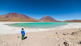 Grön lagun och Licancabur vulkan på bolivianska Anderna Royaltyfri Fotografi