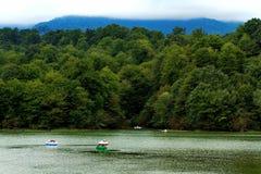 grön lake Royaltyfria Foton