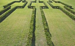 Grön lawn med prydnaden av buskar arkivbilder