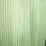 grön leafgräns för bakgrund Royaltyfri Foto