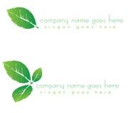 grön leaflogo för företag Royaltyfria Foton