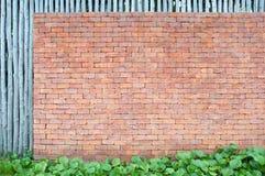 grön leafvägg för tegelsten Royaltyfria Bilder