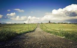 grön liggande för fält Royaltyfri Fotografi