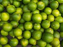 grön limefrukt royaltyfria bilder