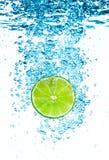 Grön limefrukt i vattnet. royaltyfri foto