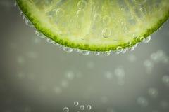 Grön limefrukt med vattenfärgstänk Arkivbild