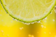 Grön limefrukt med vattenfärgstänk Gul bakgrund Fotografering för Bildbyråer