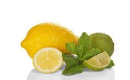 Grön limefrukt, mintkaramell och citron arkivbild