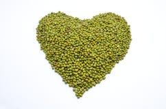 Grön lins Royaltyfri Bild