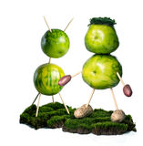 grön living royaltyfria foton