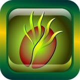 grön logo för kaffe Arkivfoton