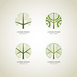 grön logotree Royaltyfria Foton