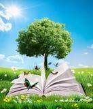 Grön magisk bok royaltyfri illustrationer