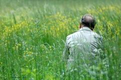 grön man för fält Arkivbild