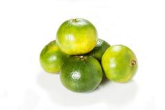 grön mandarin Arkivbilder