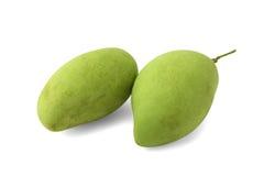 Grön mango Royaltyfria Bilder