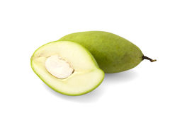 Grön mango Royaltyfri Foto