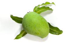 Grön mango på vit bakgrund arkivfoto