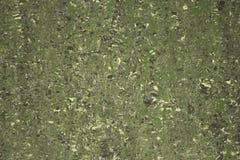 Grön marmor med vita och svarta fläckar naturlig textur för grov yttersida royaltyfria bilder