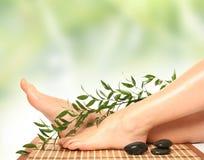 grön massage Arkivfoton