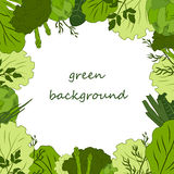 grön matbakgrund Arkivfoton