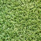 Grön matttextur Arkivfoton