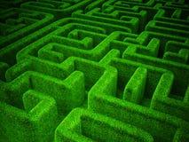 Grön maze Royaltyfria Bilder