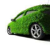 grön metafor Arkivbild