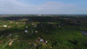 Grön miljö på Sabah Malaysia arkivfilmer