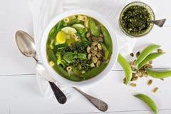 Grön minestrone med grönsaker Royaltyfria Bilder